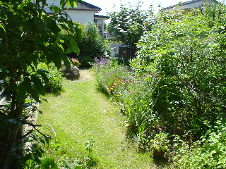 wildgarden2004.JPG