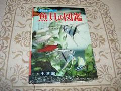 魚貝の図鑑