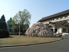 Kokuhaku200704