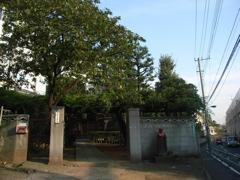 藤棚のあるお寺