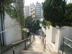 小日向:八幡坂2