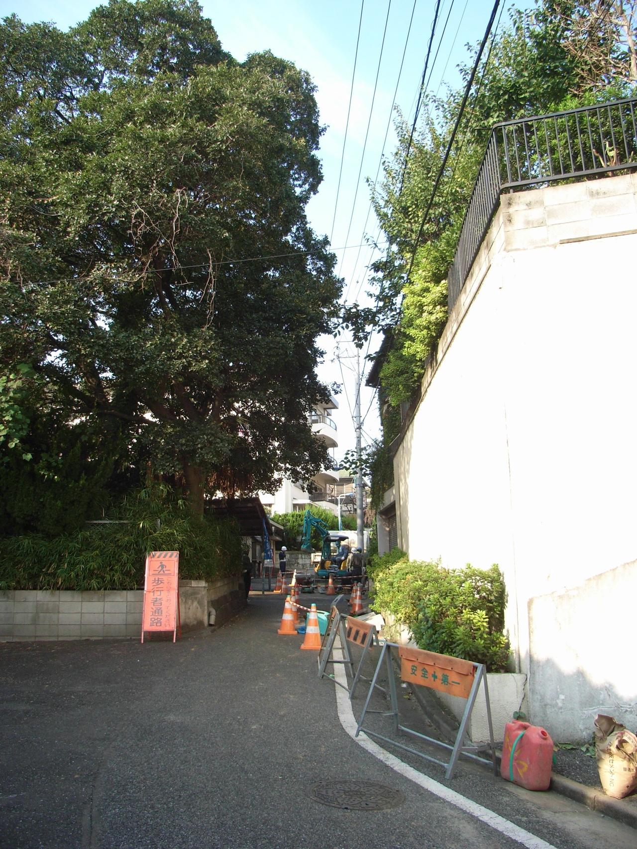 薬罐坂 そのお寺の周りをぐるっと回って反対に下りる坂が薬罐坂(022)。ここは道...  小日向