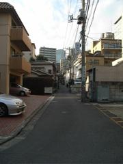 Saka200611Ochiai3-1