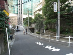 Saka200611Okumi