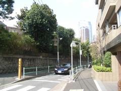 Saka200703Kurayami