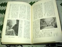 東京の坂道の中身